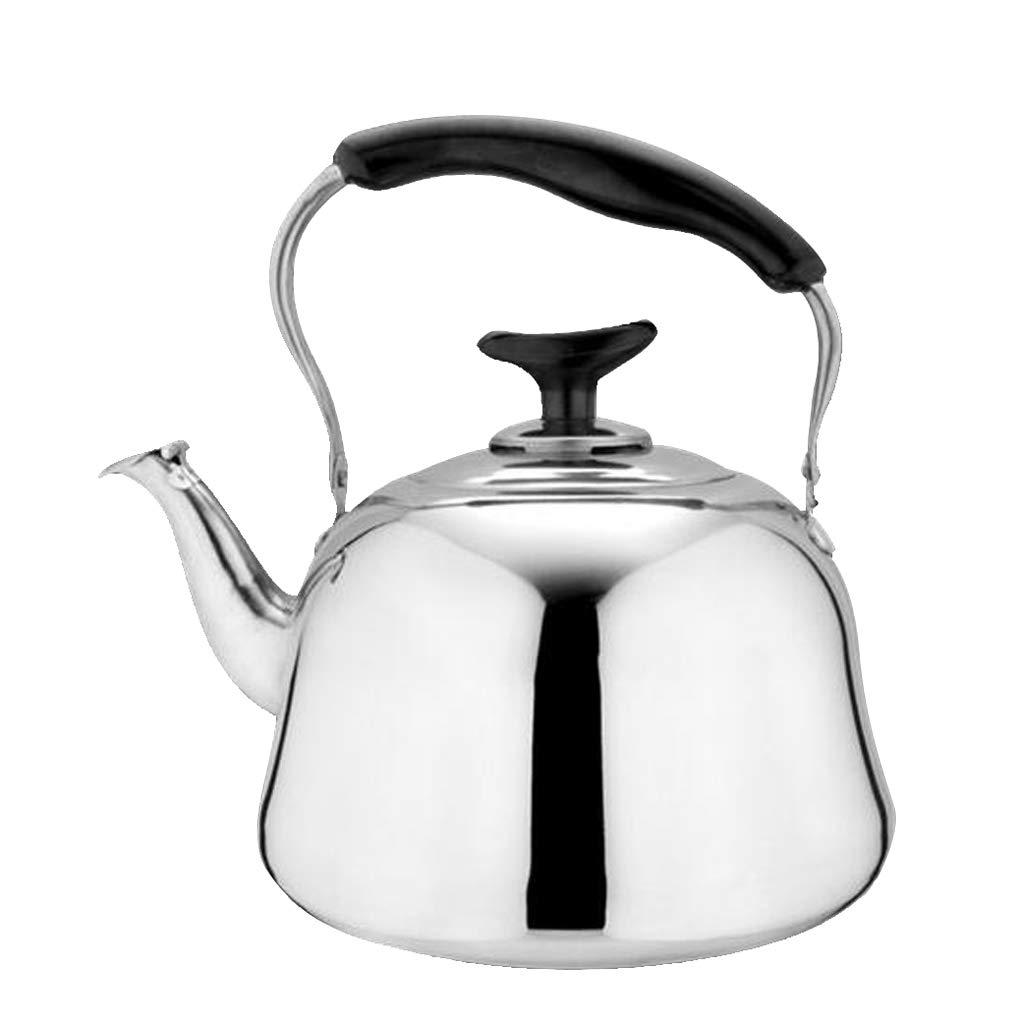 Whistling Tea Kettle Tetera De Acero Inoxidable Tetera De ...