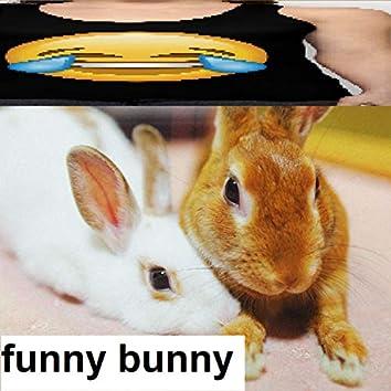 Bunniest Joke Ever (Funny Bunny Single Edit)
