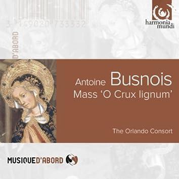 """Busnois: Mass """"O crux lignum"""""""