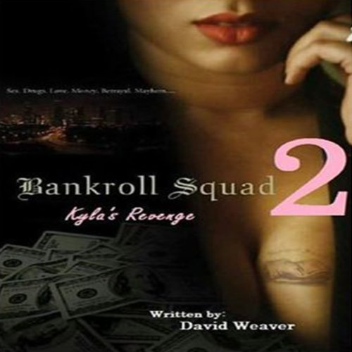 Bankroll Squad 2 audiobook cover art