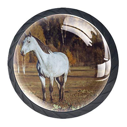 HorseHorse - Pomos de cristal para armario de guardería, armario y cocina
