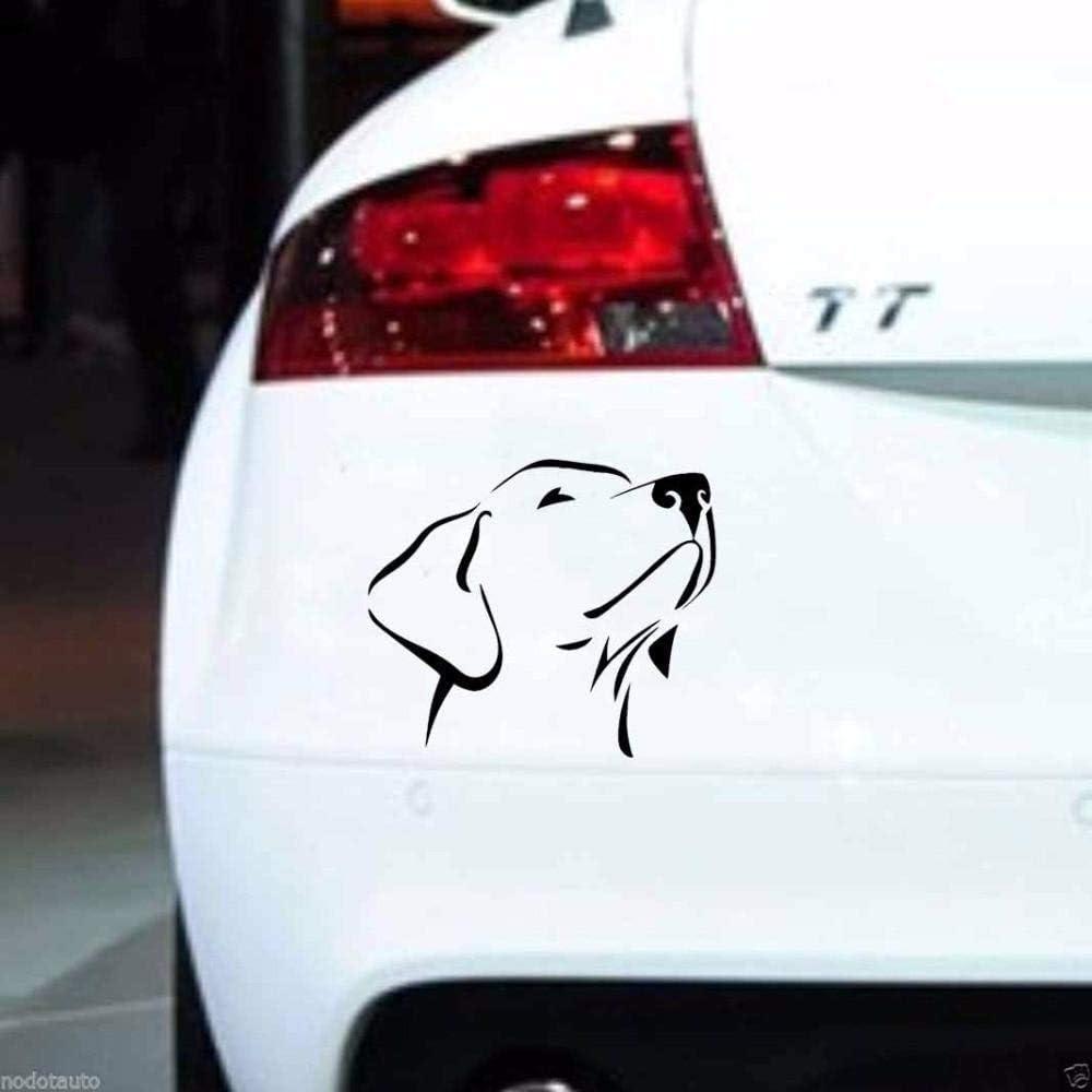 Stukk Stickers Vinyl Aufkleber Motiv Labrador Retriever 14 X 12 Cm Schwarz Weiß Schwarz Auto