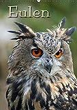Eulen / CH-Version (Wandkalender 2018 DIN A2 hoch): Lautlose Jäger der Nacht (Monatskalender, 14 Seiten ) (CALVENDO Tiere) [Kalender] [Apr 01, 2017] / ... Berg + Antje Lindert-Rottke, Pferdografen.de