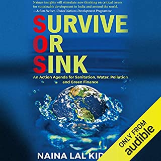 Survive or Sink cover art