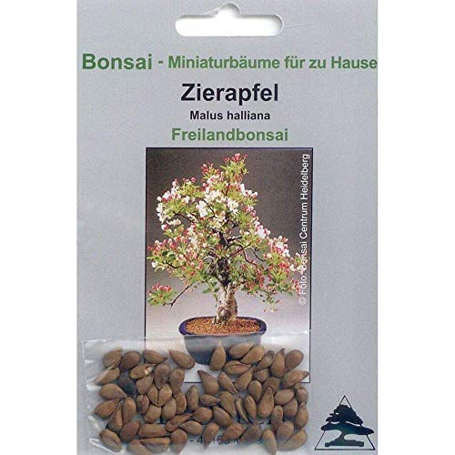 Tropica - bonsaï - pommier japonais (Malus Halliana) - 30 graines