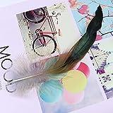 ONWA 50 Uds Plumas de Pollo de Color Natural 8-13 CM Pluma de faisán para Manualidades decoración de Fiesta de Disfraces penachos fabricación de Joyas