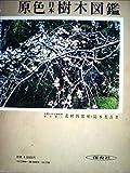 原色日本樹木図鑑 (1959年) (保育社の原色図鑑〈第19〉)