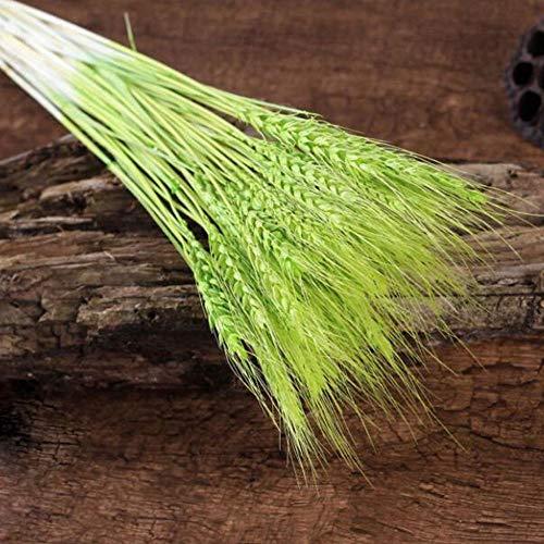 QWERTYU LifuqiangME 50PCS / Lot natuurlijk droog oor bloemen grano parfum voor decoratie van de bruiloft, DIY Home Decor Scrapbook Grano Branch Props