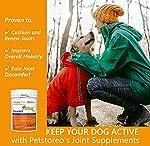 Supplément Naturel Anti Inflammatoire Chien: Complement Alimentaire Chien pour Articulation Rigide #2