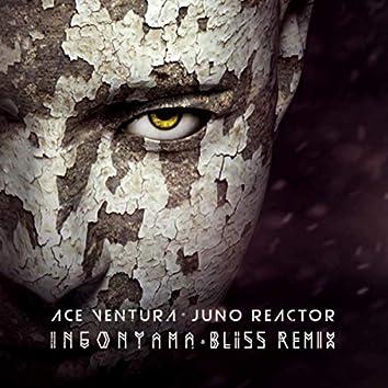 Ingonyama (Bliss Remix)