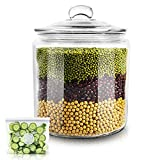 Glass Jar with Fresh Sealed Lid 1 Gallon Glass Storage Container Jars Used To Store Food & Make Medicinal Liquor Storage Jar Masthome (15PCS Food Storage Bags Included)