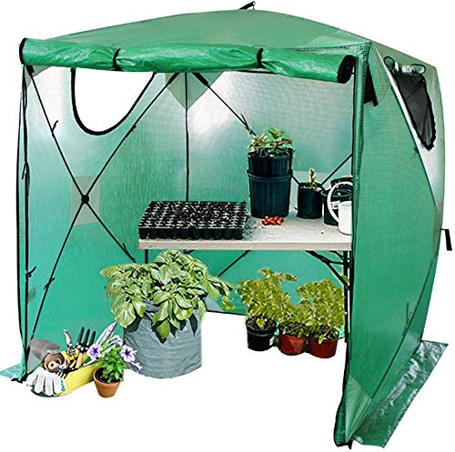 Kradl 2 Minute, Instant Greenhouse for Outdoors | Pop Up Greenhouse Kit | Portable Canopy for Plants 69 x 69 x 81 Inches