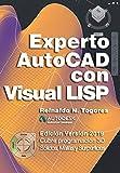 Experto AutoCAD con Visual LISP: Edición Versión 2019