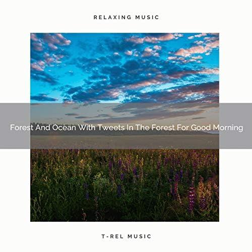 Nature Songs Nature Music