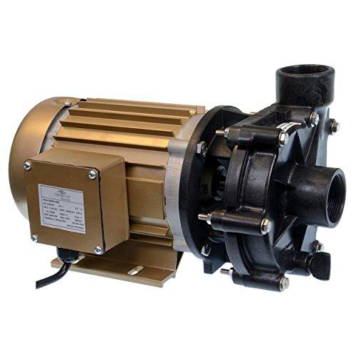 Reeflo 11143 Utility Hammerhead/Barracuda Hybrid Pump