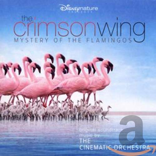 Crimson Wing:Mystery of the Fl [Import allemand]