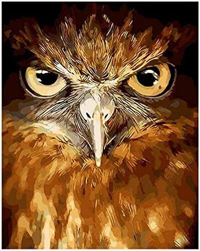 perfecto UPUPUPUP Owl Bird DIY Pintura by by by Numbers Animal Abstracto Pintura Al óleo sobre Lienzo Acrílico Arte de la Parojo 2019 Decoración para el hogar, Tworidc5-50X70Cm Enmarcado  ordenar ahora