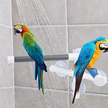 Perchoir de Bain pour Oiseau, PVC Douche Support de Bain avec Ventouse pour Ara Cacatoès Africain Gris Perruche Calopsitte Conure