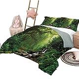 Tagesdecke Bettdecke Set voller Größe Regenwald Moderner Stil Leichte, langlebige Feder in Nepal Fußweg