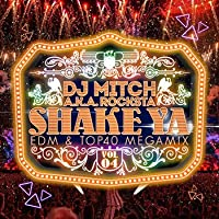 SHAKE YA♪ - EDM & TOP40 MEGAMIX - VOL.4 -
