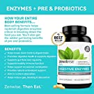 Zenwise Health Digestive Enzymes Plus Prebiotics & Probiotics Supplement, 180 Servings, Vegan Formula for Better Digestion & Lactose Absorption with Amylase & Bromelain, 2 Month Supply #4