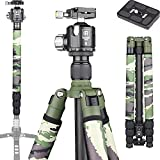 Carbon Fiber Tripod-RT75CG Super Professional Tripod Monopod Heavy Duty Compact Stand Support with 44mm/1.73in Low Gravity Center 360Panoramic ballhead for Digital DSLR Camera, max Load 25kg/55lb