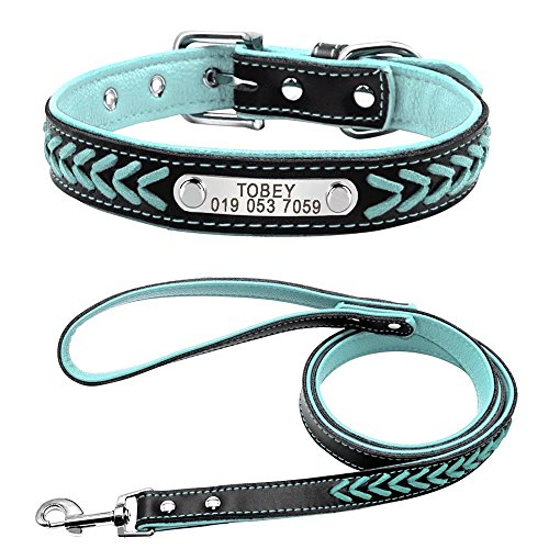 Didog 4 Feet Stylish Leather Padded Custom Pet Collar and Leash Set,Personalized Engraving ID Tag Collar for Small Medium Dogs and Cats,Blue,S Size