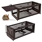 Best Squirrel Traps - RatzFatz Mouse Traps, Small Animal Humane Live Cage Review