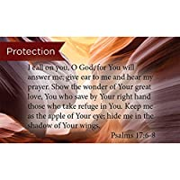 Pass Along ポケットスクリプチャーカード 保護 詩篇17:68 25枚パック