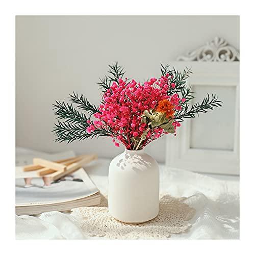 Qagazine Ramo de flores naturales frescas secas de Gypsophila con florero de porcelana flores secas con ramas tallos decoración verde