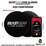 Zoom IMG-2 beast gear core sliders dischi