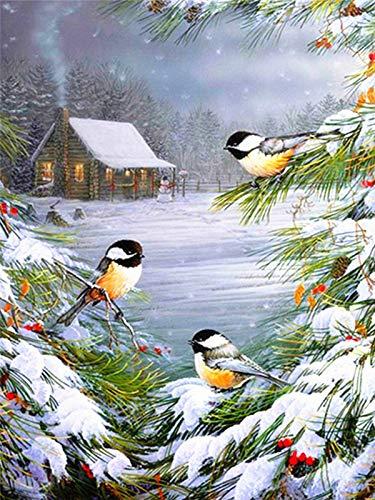 Diamant broderie oiseau bricolage 5d diamant peinture plein diamant carré paysage décoration de la maison diamant peinture A1 45x60 cm