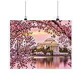 INNOGLEN Spring Cherry Blossom in Washington DC Art A0 A1 A2 A3 A4 Satin Photo Poster p11646h