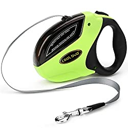 What Is The Best Retractable Dog Leash For Small Dogs? 6