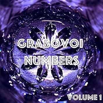Grabovoi Numbers, Vol. 1