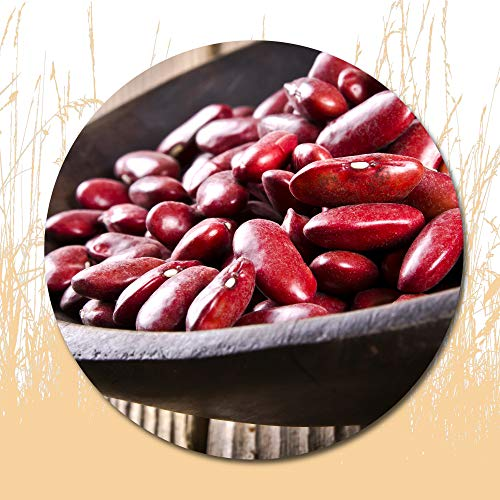 10 Pcs Kidney Beans Seeds for Planting Outside Door -Cooking Dish Soup Taste Good Delicious
