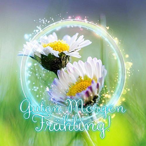 Guten Morgen Frühling! – Klassische Musik für das Wohlbefinden, Spaziergang im Park, Positives Denken, Picknick mit Wahre Freunde, Stressabbau, Hintergrundmusik für Alles