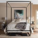 Baxton Studio Eva Vintage Industrial Black Finished Metal Canopy Queen Bed Vintage Industrial/Black/Metal