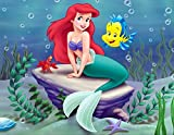 The Little Mermaid Ariel Princess Edible Image Photo Cake Topper Sheet Birthday Party Event - 1/4 Sheet - 78912
