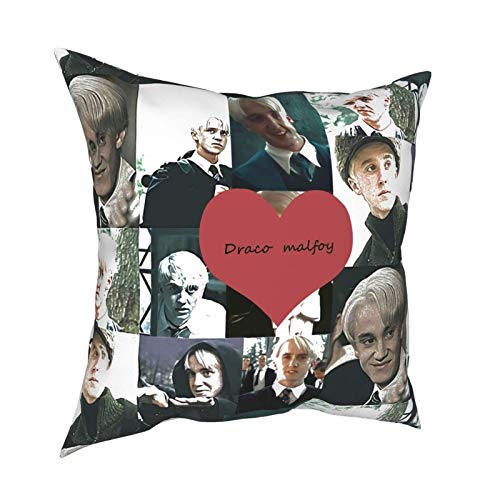 Draco Malfoy Throw Pillow Federa divertente Draco Malfoy Funny Gag Gifts Regalo di compleanno di Natale 18x18 (Twin Sides)