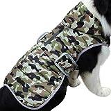 JoyDaog Sudadera de forro polar para perros pequeños, cálida chaqueta de...
