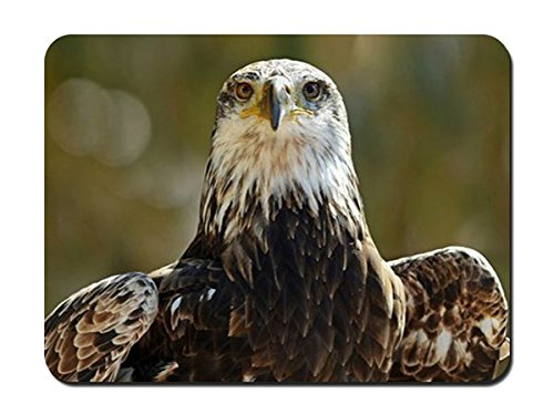 Eagle Eyes Predator Bird Mouse Pad - 8.6'x7.1'(22cmx18cm)