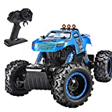 NQD RC Car, Remote Control Monster Trucks 1:12 Big Scale 4WD Off Road Rock Crawlers 2.0Ghz Radio...