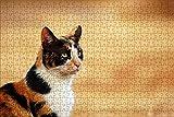 LHJOY Puzzle educa Puzzle 1000 Piezas Animal Gato Regalo de cumpleaños 75x50cm