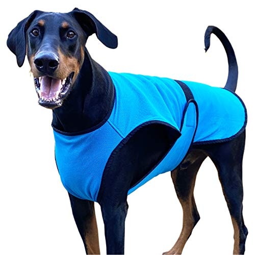 DOGZSTUFF Dog Cooling Vest. Triple-Layer Lightweight Jacket, Microfiber Cooling Technology, UV Protection Shirt for Summer, Sizing for Small, Medium and Large Dogs (XS, Light Blue)