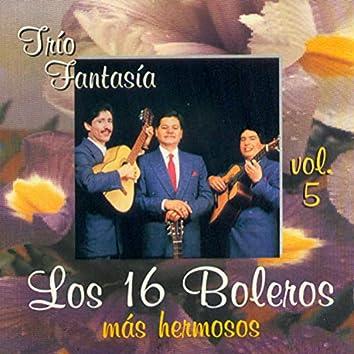 Los 16 Boleros Más Hermosos (Vol. 5)