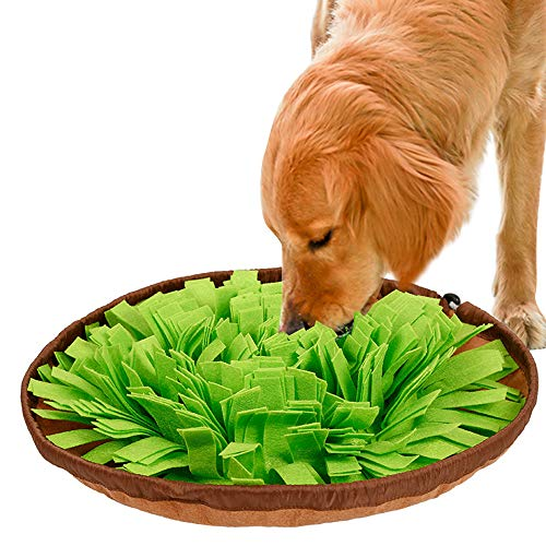 IEUUMLER Schnüffelteppich Riechen Trainieren Matte Geruchsempfindung Trainieren Matte Für Hunde Und Katzen IE112 (Green)