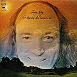 Terry: A Rainbow in Curved Air [Vinilo]