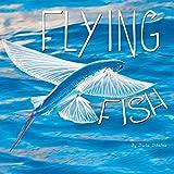 Flying Fish (Ocean Animals)