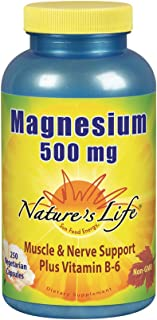 Nature's Life Magnesium Capsules, 500mg | High Potency Magnesium Supplement Plus Vitamin B-6 for Muscles & Nerves Support | 250 Count